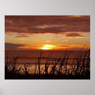 Puesta del sol de Nueva Zelanda Posters