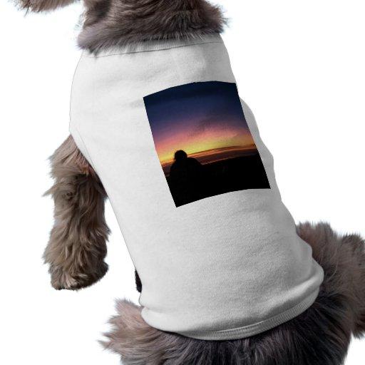 Puesta del sol de observación playera sin mangas para perro