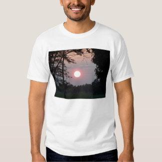 Puesta del sol de oct. enmarcada por los árboles poleras