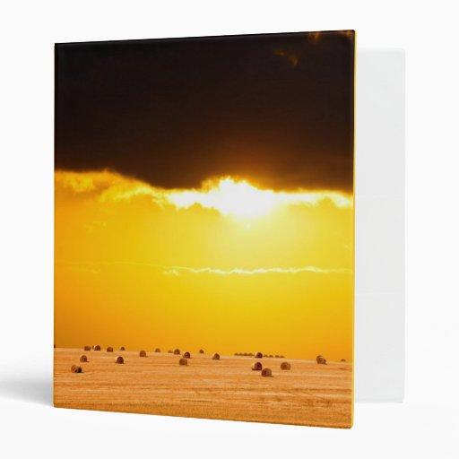 Puesta del sol de oro a través de tierras de labra