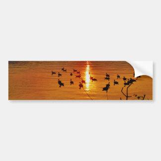 Puesta del sol de oro del lago con los gansos