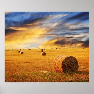 Puesta del sol de oro sobre campo de granja póster