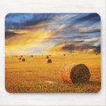 Puesta del sol de oro sobre campo de granja tapete de raton