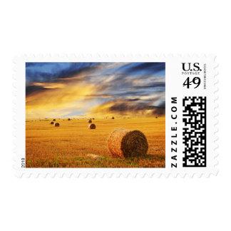 Puesta del sol de oro sobre campo de granja timbres postales