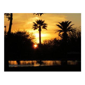 Puesta del sol de oro sobre la postal de Tucson