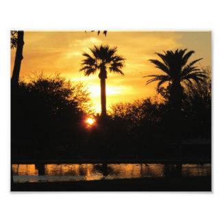 Puesta del sol de oro sobre Tucson Cojinete