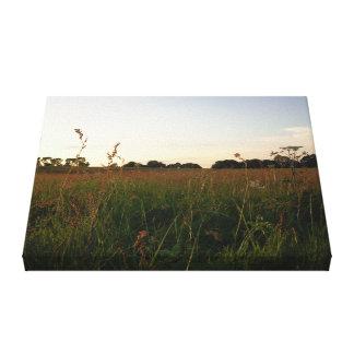 Puesta del sol de Somerset sobre un prado hermoso Lona Estirada Galerias