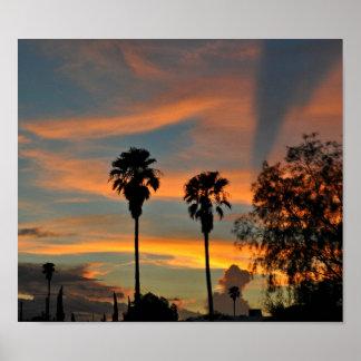 Puesta del sol de Sonoran Posters