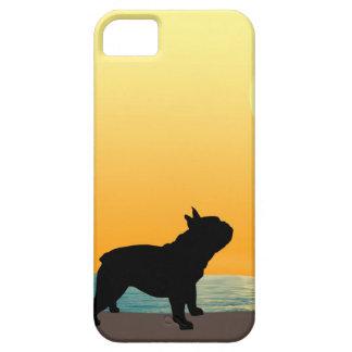 Puesta del sol de Surfside del dogo francés iPhone 5 Protectores