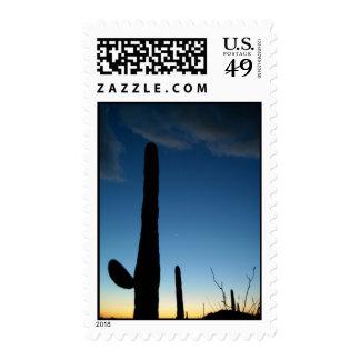 Puesta del sol de Tucson Sellos