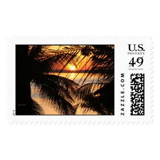 Puesta del sol del Amazonas Sello Postal