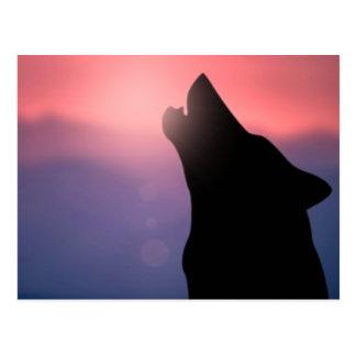 Puesta del sol del aullido del lobo tarjeta postal