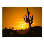 Puesta del sol del cactus tarjetas postales