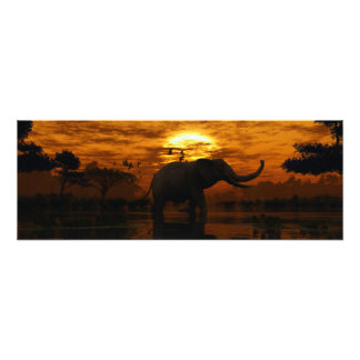 Puesta del sol del elefante fotografía
