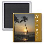Puesta del sol del Hawaiian del oro Imán