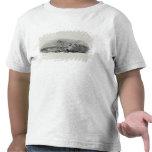 Puesta del sol del invierno camisetas