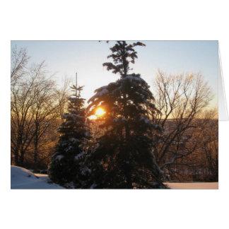 Puesta del sol del invierno con los árboles de tarjeta de felicitación