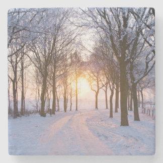 Puesta del sol del invierno posavasos de piedra