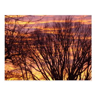 Puesta del sol del invierno tarjeta postal