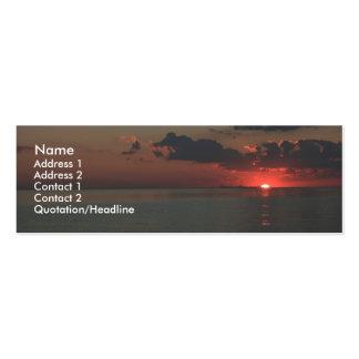 Puesta del sol del jade tarjetas de visita mini
