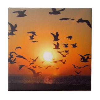 Puesta del sol del lago Erie Azulejo Cuadrado Pequeño
