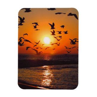 Puesta del sol del lago Erie Imán Rectangular