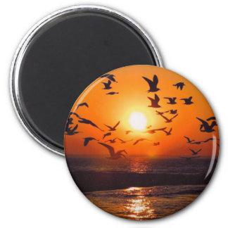 Puesta del sol del lago Erie Imán Redondo 5 Cm