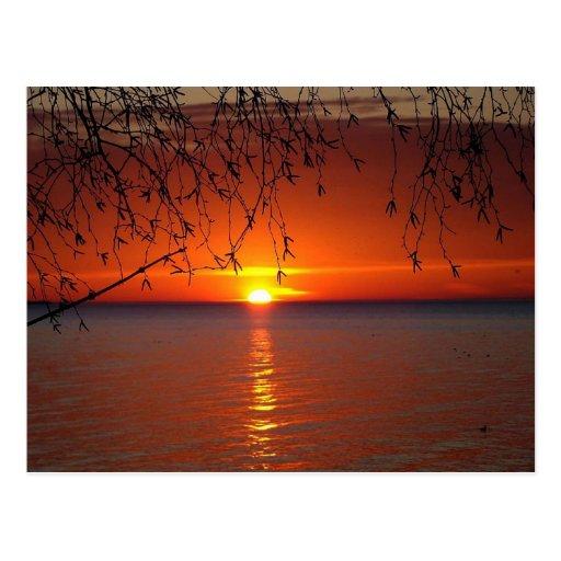 Puesta del sol del lago Hurón Tarjetas Postales