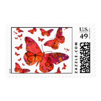 Puesta del sol del monarca de las mariposas franqueo