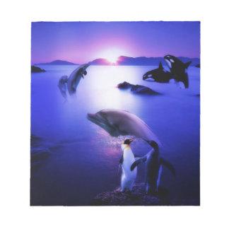 Puesta del sol del océano de los pingüinos de los  blocs de papel