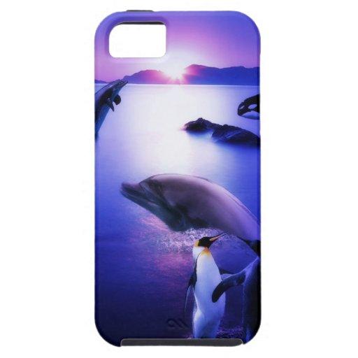 Puesta del sol del océano de los pingüinos de los  iPhone 5 funda