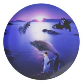 Puesta del sol del océano de los pingüinos de los  platos