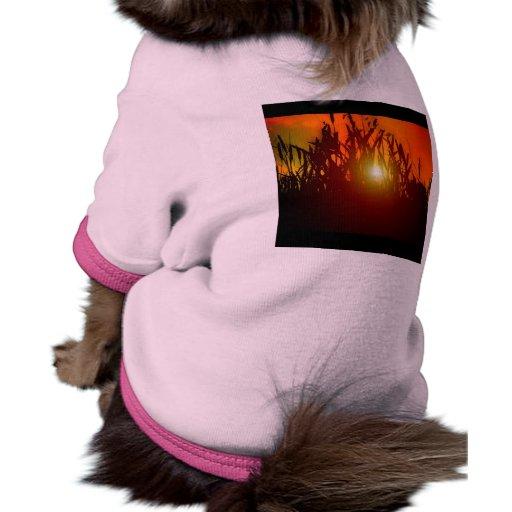 Puesta del sol del país a través de un campo camisetas de perro