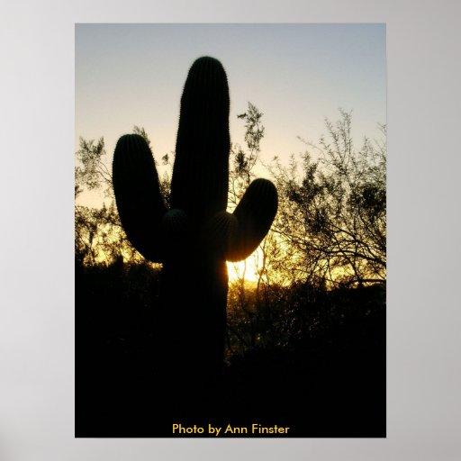 Puesta del sol del poster/del Saguaro Póster