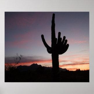 Puesta del sol del Saguaro de Arizona Poster