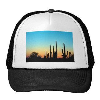 Puesta del sol del Saguaro Gorro