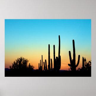 Puesta del sol del Saguaro Posters