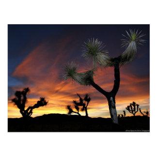 Puesta del sol del valle del desierto tarjeta postal