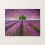 Puesta del sol del verano del paisaje del campo de puzzle con fotos