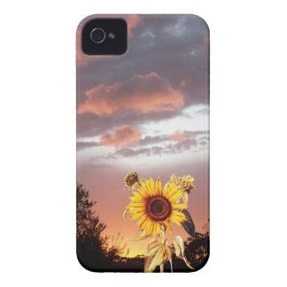 PUESTA DEL SOL DEL VERANO Case-Mate iPhone 4 PROTECTORES