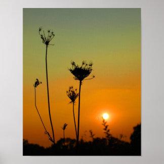 Puesta del sol del verano tardío póster