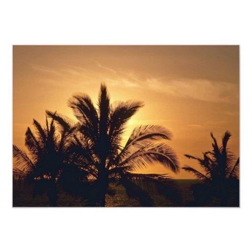 Puesta del sol detrás de las palmas anuncios
