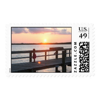 Puesta del sol detrás del muelle en la Florida con Sellos