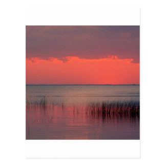 Puesta del sol Dreamscape la Florida Postales