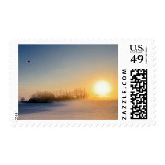 Puesta del sol el día de navidad en campo sello