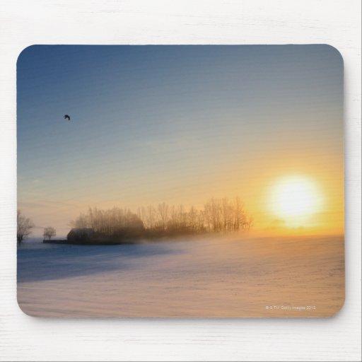 Puesta del sol el día de navidad en campo tapete de ratón