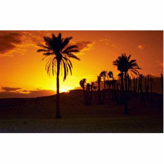 Puesta del sol en el desierto, desierto del fotoescultura vertical