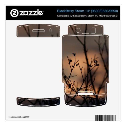 Puesta del sol en el fondo BlackBerry skins