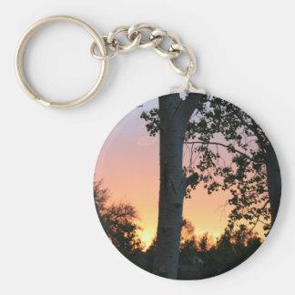 Puesta del sol en el llavero de los árboles