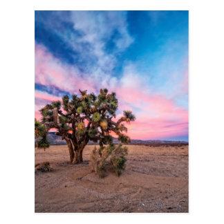 Puesta del sol en el Mojave Tarjeta Postal